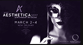 Aesthetica Banner March 2017